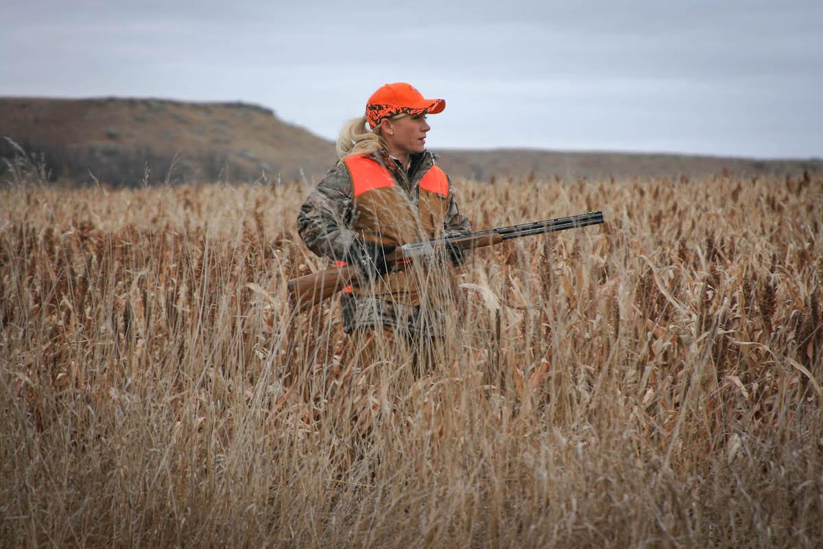 Pheasant hunting diamond a ranch south dakota for South dakota fishing license