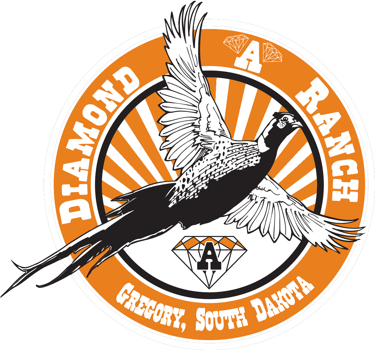 South Dakota Pheasant Hunts | SD Pheasant Hunting Lodge | Diamond A Ranch