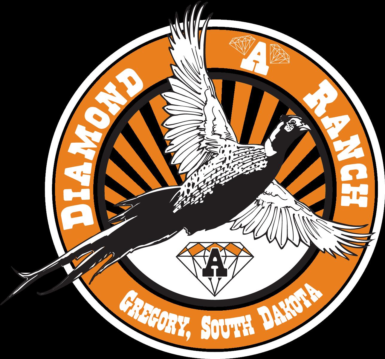 South Dakota Pheasant Hunts | SD Pheasant Hunting Lodge | Diamond A Ranch