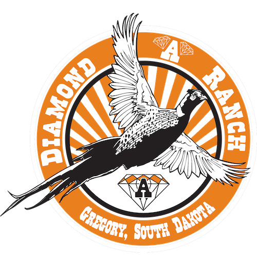 South Dakota Pheasant Hunts | Diamond A Ranch